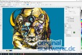 CorelDRAW Graphics Suite 2019 | Mehrsprachig | Box Vollversion | MAC