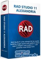 RAD Studio 11 Alexandria Professional | unbefristete Lizenz | Upgrade + 1 Jahr Wartung