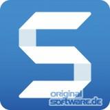 TechSmith Snagit | Wartung für 1 Jahr | Staffel 25-99